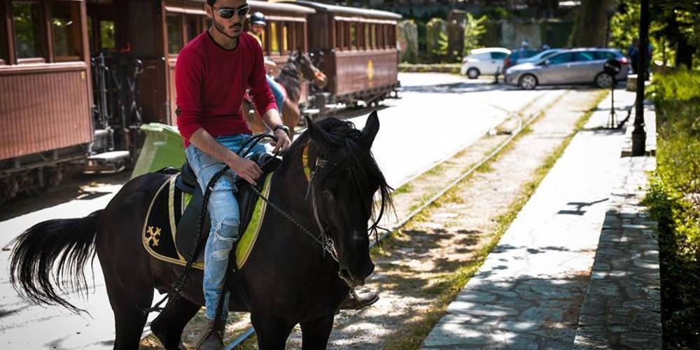 Tours on horseback