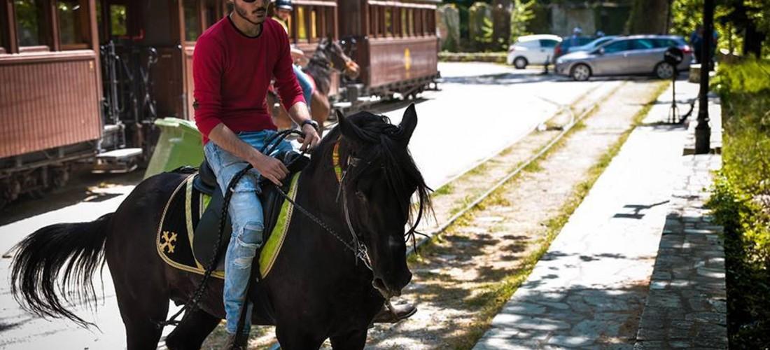 Περιηγήσεις με άλογα